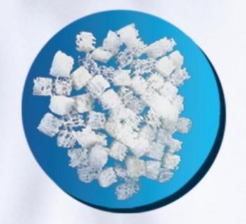 冻干松质骨粒